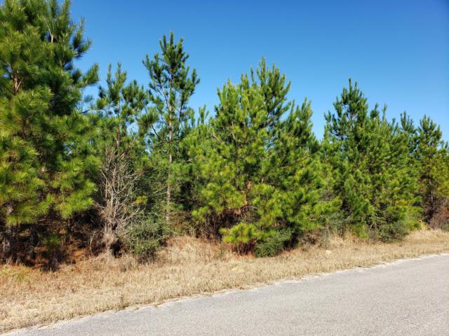 11 Clear Lake Rd, Perkinston, MS 39573 (MLS #343140) :: Keller Williams MS Gulf Coast