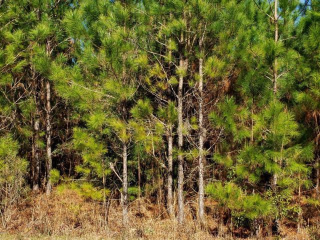 29 Clear Lake Rd, Perkinston, MS 39573 (MLS #343144) :: Keller Williams MS Gulf Coast