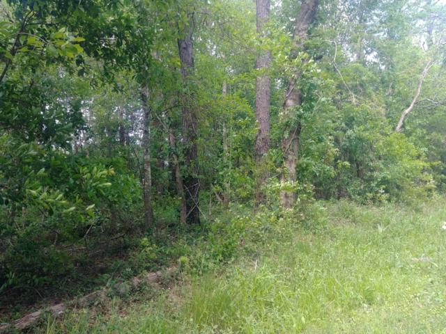 0 E East Forrest St, Bay St. Louis, MS 39520 (MLS #344313) :: Coastal Realty Group