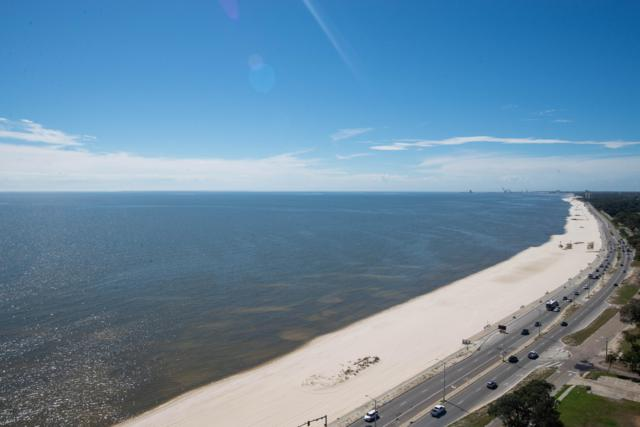 2668 Beach Blvd #2203, Biloxi, MS 39531 (MLS #344918) :: Coastal Realty Group