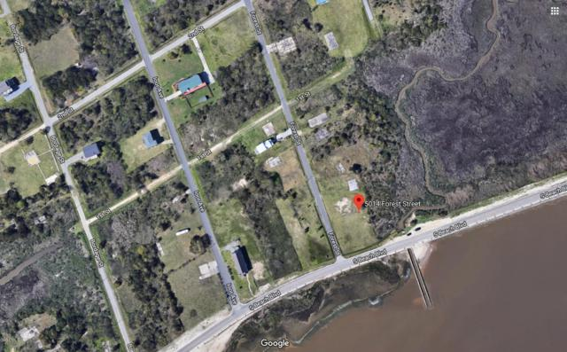 5014 Forrest Ave, Bay St. Louis, MS 39520 (MLS #345817) :: Sherman/Phillips
