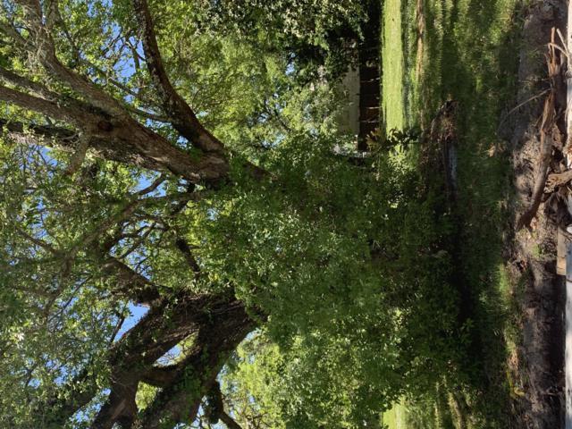 275 Querens Ave, Biloxi, MS 39530 (MLS #346866) :: Coastal Realty Group