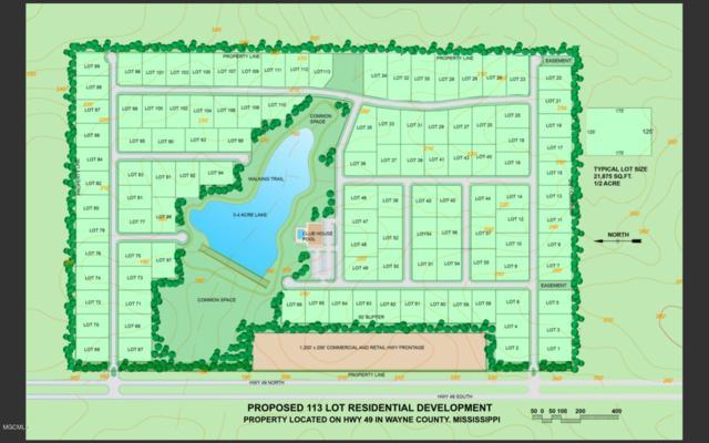 0 Hyw 49, Perkinston, MS 39573 (MLS #347265) :: Coastal Realty Group