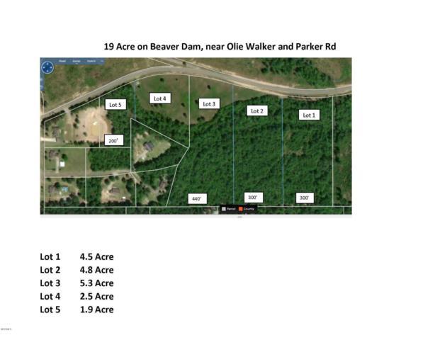 Lot 1 Beaver Dam Rd, Perkinston, MS 39573 (MLS #348566) :: Sherman/Phillips