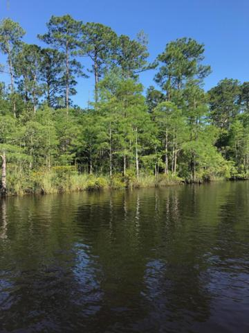 00000 Meadowdale Dr, Gautier, MS 39553 (MLS #349588) :: Coastal Realty Group
