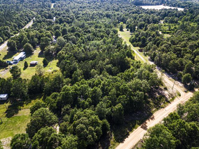 3.42 Acres Diamond Radar, Perkinston, MS 39573 (MLS #349873) :: Coastal Realty Group