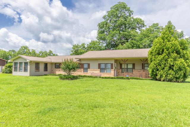 82 Fruitland Park Rd, Wiggins, MS 39577 (MLS #349898) :: Coastal Realty Group