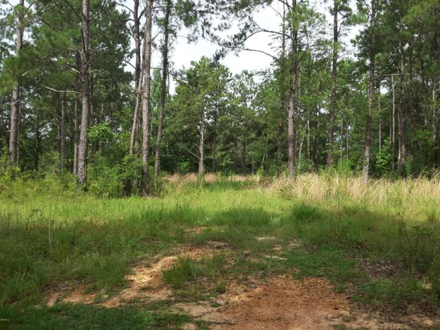 Lot 3 Rester Rd, Perkinston, MS 39573 (MLS #350065) :: Coastal Realty Group
