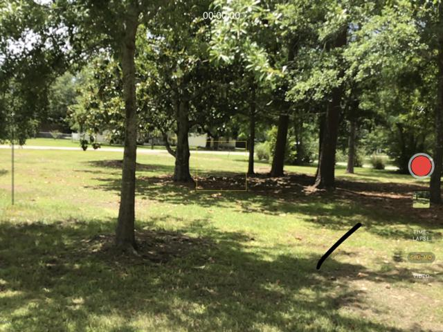 5300 Quincy Ave, Gulfport, MS 39507 (MLS #350568) :: Coastal Realty Group