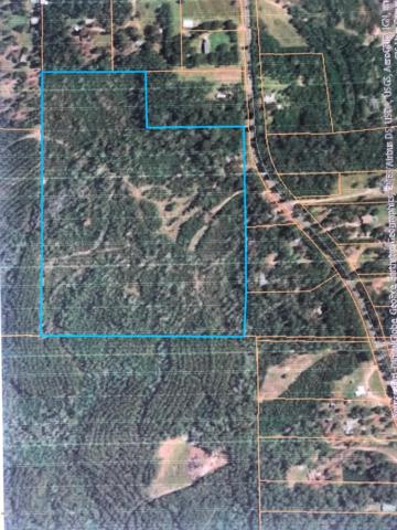 959 Anchor Lake Rd, Carriere, MS 39426 (MLS #350735) :: Coastal Realty Group