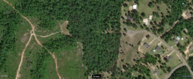 000 Hunters Walk, Wiggins, MS 39577 (MLS #351694) :: The Sherman Group