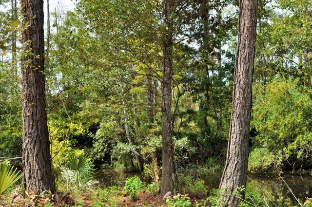 Lot 45 Lowtide, Moss Point, MS 39562 (MLS #353265) :: Coastal Realty Group
