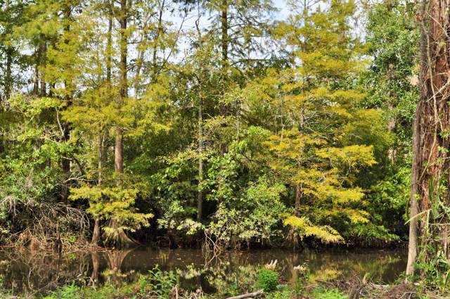 Lot 46 Lowtide, Moss Point, MS 39562 (MLS #353268) :: Coastal Realty Group