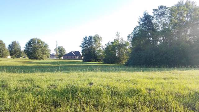 00 North Hill Dr Lot 29, Carriere, MS 39426 (MLS #353372) :: The Sherman Group