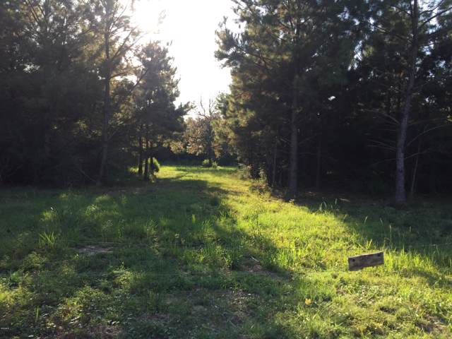 7.9 Ac Carry Byrd Rd, Carriere, MS 39426 (MLS #354051) :: The Sherman Group