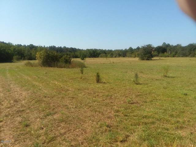 23000 NE Enoc Nettles Rd, Picayune, MS 39466 (MLS #354083) :: Coastal Realty Group