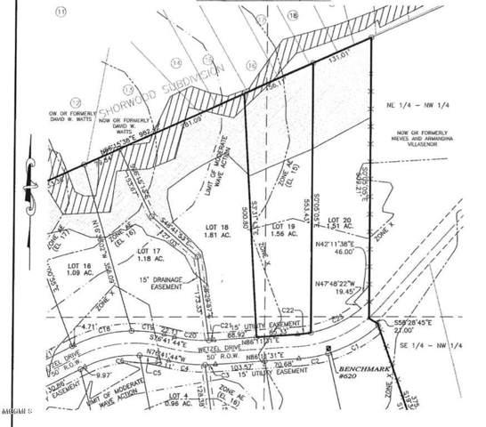 Lot 19 Wetzel Dr, Biloxi, MS 39532 (MLS #354624) :: Coastal Realty Group