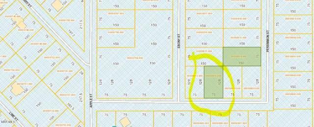 Lot 2854 Persimmon St, Ocean Springs, MS 39564 (MLS #355201) :: Coastal Realty Group