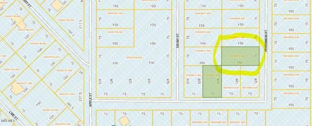 Lot 2857 Persimmon St, Ocean Springs, MS 39564 (MLS #355203) :: Coastal Realty Group
