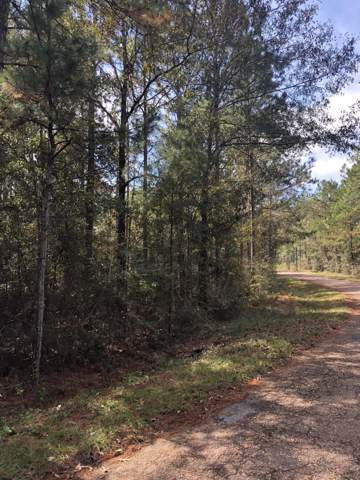 0 Flurry Dr Lot 9, Perkinston, MS 39573 (MLS #355521) :: The Sherman Group