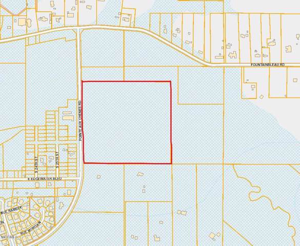 Nhn Pointe Aux Chenes Rd, Ocean Springs, MS 39564 (MLS #356480) :: Coastal Realty Group