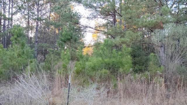 560 Larow Dr, Carriere, MS 39426 (MLS #357088) :: The Sherman Group