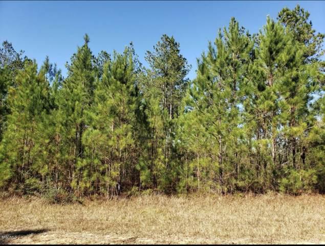 20 Clear Lake Rd, Perkinston, MS 39573 (MLS #357647) :: Coastal Realty Group