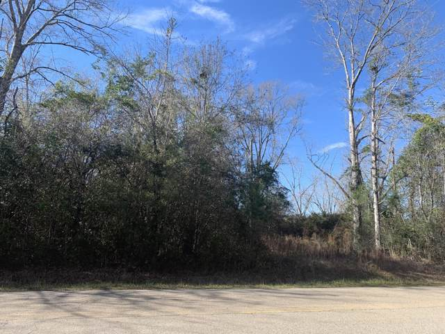 0 Leetown Rd, Picayune, MS 39466 (MLS #357703) :: Coastal Realty Group