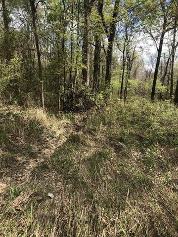 Lot 89 Plum Bluff Dr, Lucedale, MS 39452 (MLS #360297) :: Coastal Realty Group