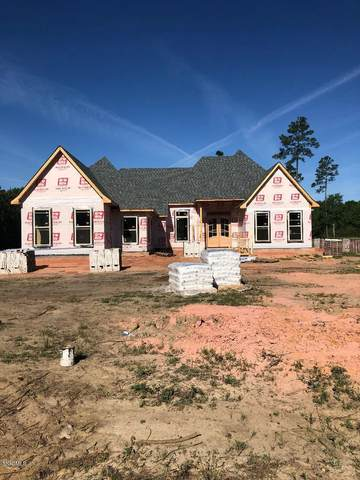 12205 N East Pointe Dr, Picayune, MS 39466 (MLS #360675) :: The Sherman Group