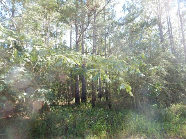 Lot 45 Blue Springs, Lucedale, MS 39452 (MLS #362905) :: Berkshire Hathaway HomeServices Shaw Properties