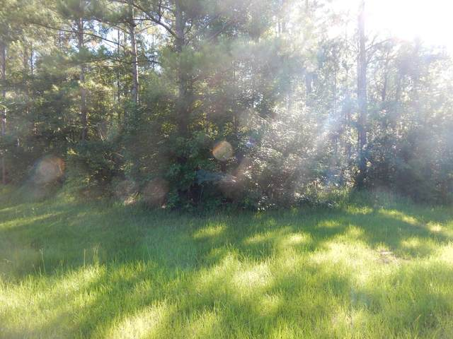 Lot 16 Blue Springs Rd, Lucedale, MS 39452 (MLS #362912) :: Berkshire Hathaway HomeServices Shaw Properties