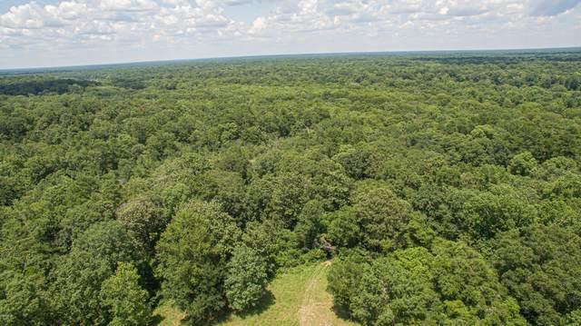 Lot 60 River Bluffs Dr, Vancleave, MS 39565 (MLS #363234) :: Keller Williams MS Gulf Coast