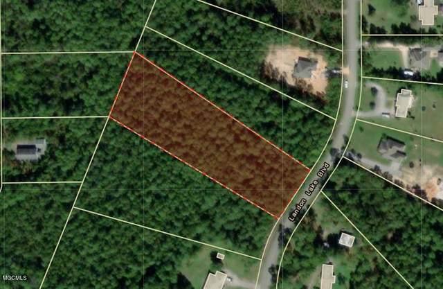 Lot 197 Landon Lake Blvd, Gulfport, MS 39503 (MLS #364496) :: The Demoran Group of Keller Williams