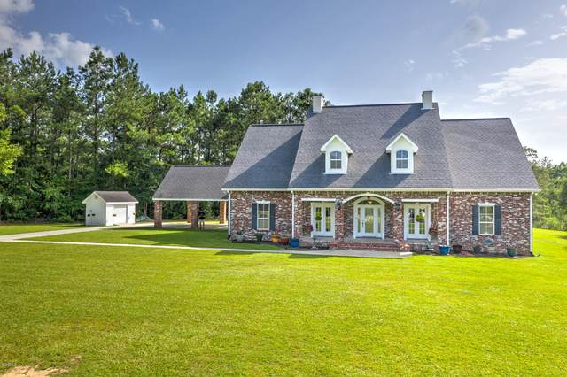 43 Mitchell Cv, Carriere, MS 39426 (MLS #364538) :: Coastal Realty Group