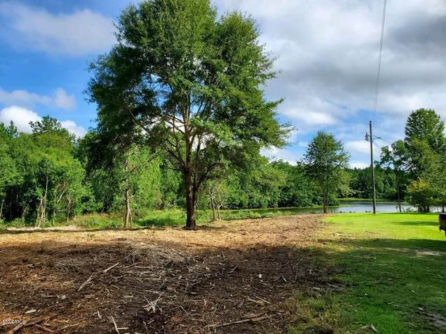 00 Lot 86 Catfish Dr, Lumberton, MS 39455 (MLS #364616) :: The Sherman Group
