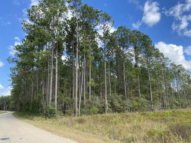 0 Fox Trail Rd, Picayune, MS 39466 (MLS #367689) :: Exit Southern Realty