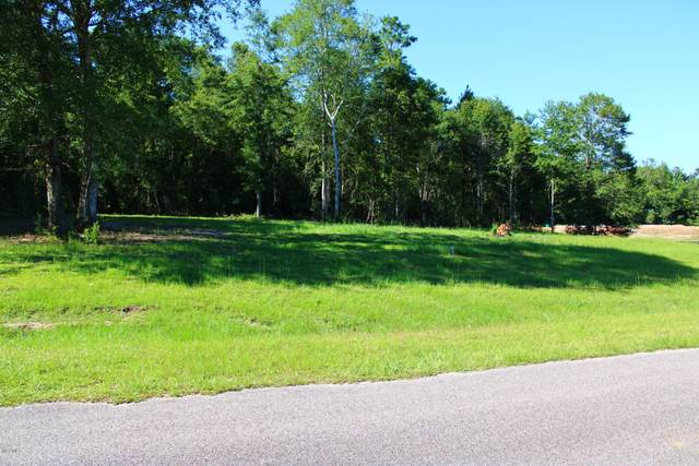 17 Forest View Dr, Carriere, MS 39426 (MLS #367982) :: The Demoran Group of Keller Williams