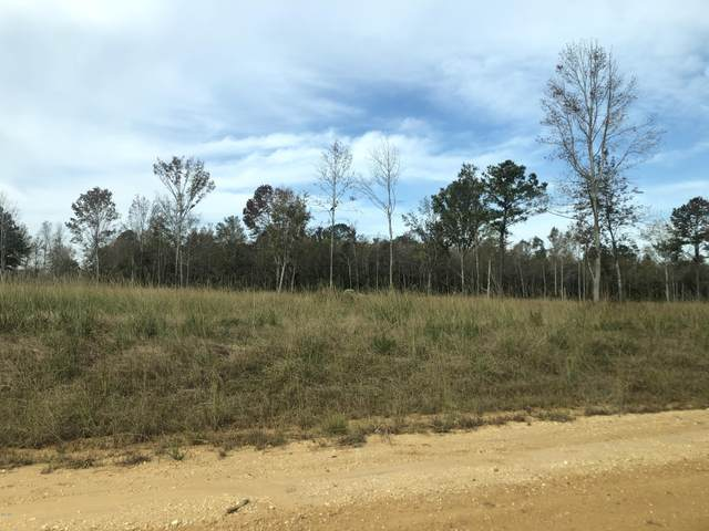 00 Jericho Ridge, Picayune, MS 39466 (MLS #368348) :: Exit Southern Realty