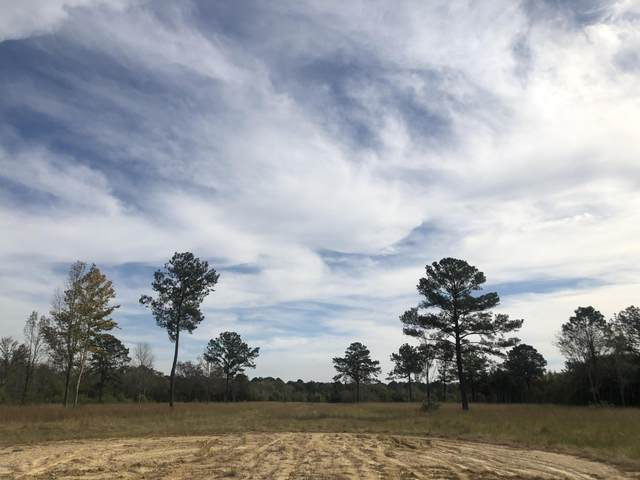 00 Hwy 43 N, Picayune, MS 39466 (MLS #368363) :: Exit Southern Realty