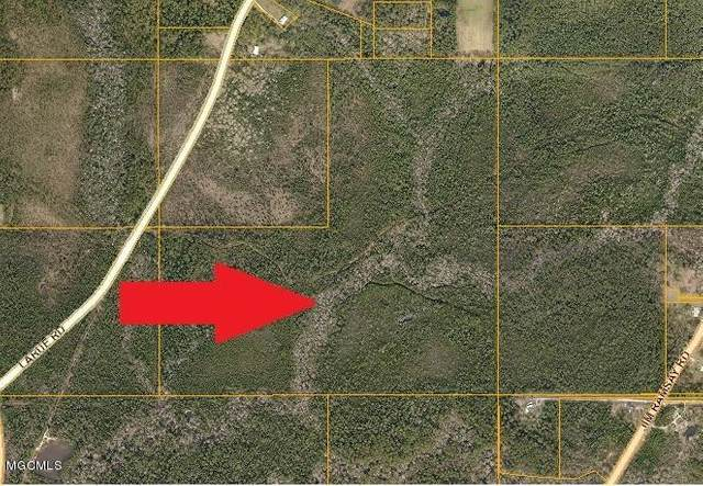 119 Acres Larue, Vancleave, MS 39565 (MLS #368419) :: Exit Southern Realty