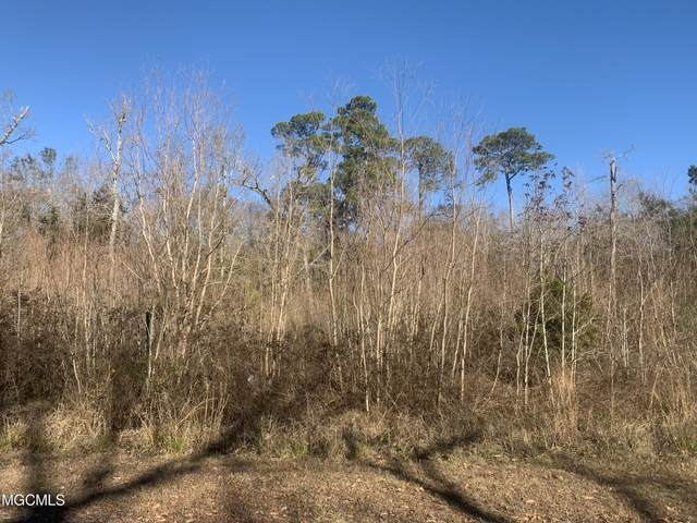 22 Cherrywood Pl, Gautier, MS 39553 (MLS #370357) :: Dunbar Real Estate Inc.