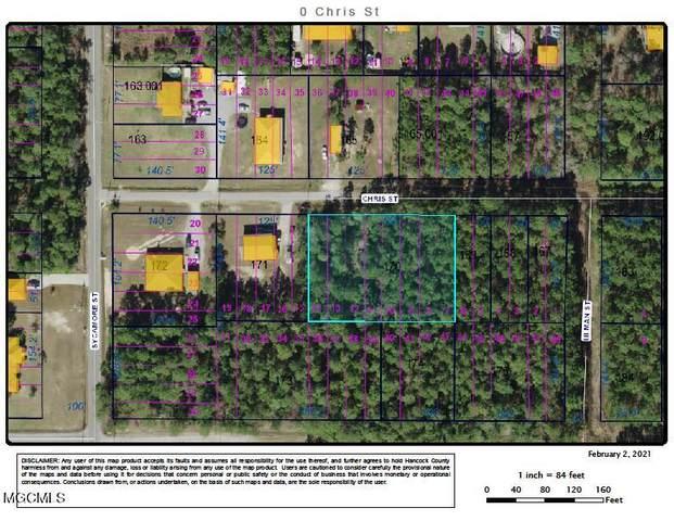 0 Chris St, Waveland, MS 39576 (MLS #370861) :: Dunbar Real Estate Inc.