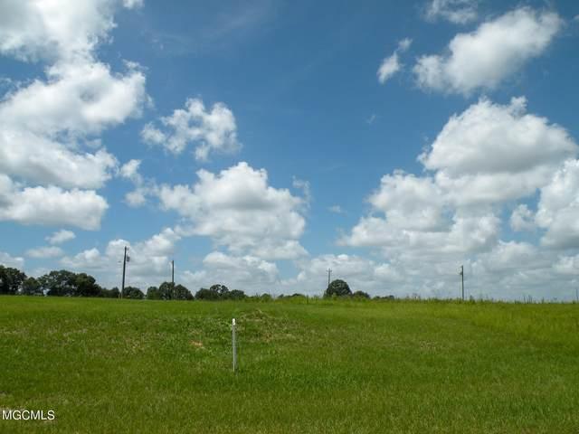 01 Sandra Parker, Lucedale, MS 39452 (MLS #371617) :: Dunbar Real Estate Inc.
