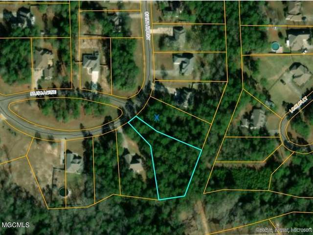 0 Chinaberry Cir, Carriere, MS 39426 (MLS #371724) :: Coastal Realty Group