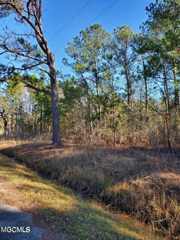 Lots 12-14 Teal St, Bay St. Louis, MS 39520 (MLS #371775) :: Berkshire Hathaway HomeServices Shaw Properties