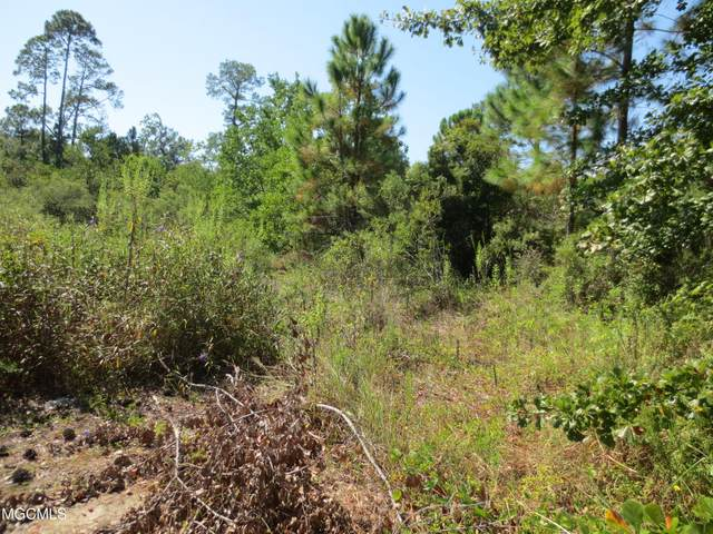 385 Morton Ave, Pass Christian, MS 39571 (MLS #373675) :: The Sherman Group