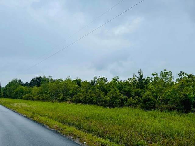 3.86 Acres Goff Road, Lucedale, MS 39452 (MLS #373919) :: Coastal Realty Group