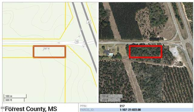 0 Ms-13, Wiggins, MS 39577 (MLS #373983) :: Coastal Realty Group