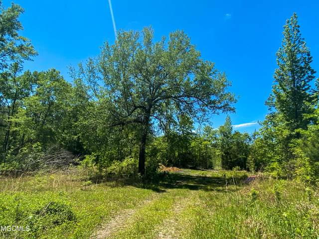 22 Ac Highway 98, Lucedale, MS 39452 (MLS #373998) :: Coastal Realty Group